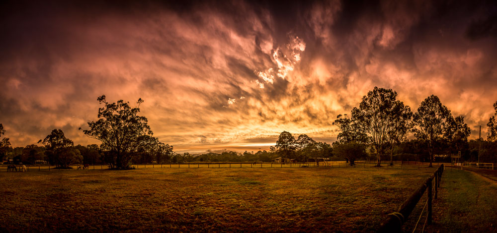 William-Simpson-Photography—Australia
